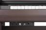 Becker BAP-62