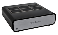 Peachtree audio amp500
